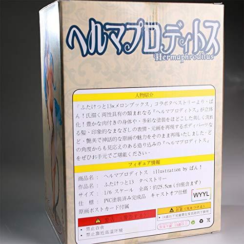 1/6 Anime Figuren Model Kit, für Anime-Fans und Erwachsene (25.5cm)